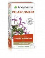 Arkogélules Pélargonium Gélules Fl/45
