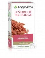 Arkogélules Levure de riz rouge Gélules Fl/45 à St Jean de Braye