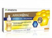 Arkoroyal Défenses Naturelles Gelée Adulte 7 Doses/10ml à St Jean de Braye