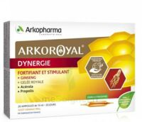 Arkoroyal Dynergie Ginseng Gelée Royale Propolis Solution Buvable 20 Ampoules/10ml à St Jean de Braye