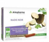 Arkofluide Bio Ultraextract Radis Noir Solution Buvable 20 Ampoules/10ml à St Jean de Braye