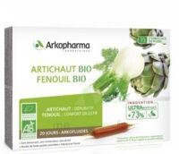 Arkofluide Bio Ultraextract Artichaut Fenouil Solution Buvable 20 Ampoules/10ml à St Jean de Braye