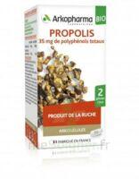 Arkogélules Propolis Bio Gélules Fl/45 à St Jean de Braye