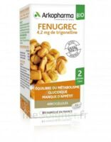 Arkogélules Fenugrec Bio Gélules Fl/40 à St Jean de Braye
