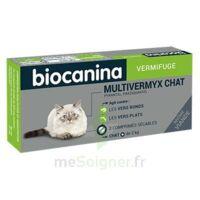 Biocanina Multivermyx Comprimés Vermifuge Chat B/2 à St Jean de Braye
