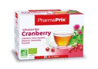 Infusion Bio Cranberry à St Jean de Braye