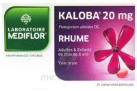 KALOBA 20 mg Comprimé pelliculé Plq/21 à St Jean de Braye