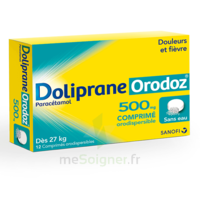 Dolipraneorodoz 500 Mg, Comprimé Orodispersible à St Jean de Braye