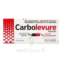CARBOLEVURE Gélules adulte Plq/30 à St Jean de Braye