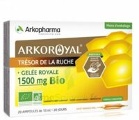 Arkoroyal Gelée Royale Bio 1500 Mg Solution Buvable 20 Ampoules/10ml à St Jean de Braye
