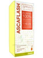 Ascaflash Spray anti-acariens 500ml à St Jean de Braye