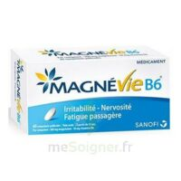 Magnevie B6 100 Mg/10 Mg Comprimés Pelliculés Plaq/60 à St Jean de Braye