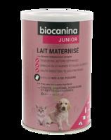 Biocanina Lait poudre maternisé B/400g à St Jean de Braye