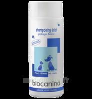 Biocanina Shampooing éclat Pelage Blanc 200ml à St Jean de Braye