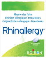 Boiron Rhinallergy Comprimés B/40 à St Jean de Braye