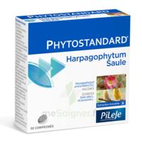 Pileje Phytostandard - Harpagophytum / Saule 30 Comprimés à St Jean de Braye
