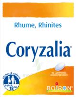 Boiron Coryzalia Comprimés Orodispersibles à St Jean de Braye