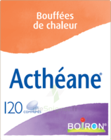 Boiron Acthéane Comprimés B/120 à St Jean de Braye
